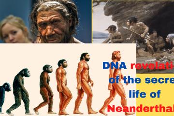 reveal the secret life of Neanderthals.